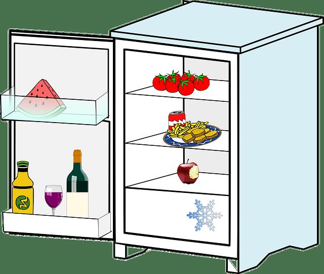 jakou lednici - rady pro správný výběr