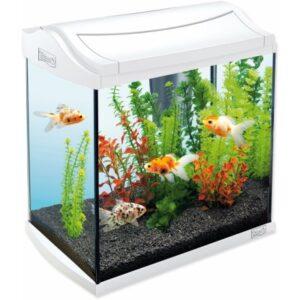 Recenze akvarijní set Tetra AquaArt LED