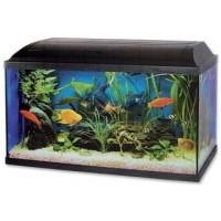 Nejlepší akvarijní sety 2021